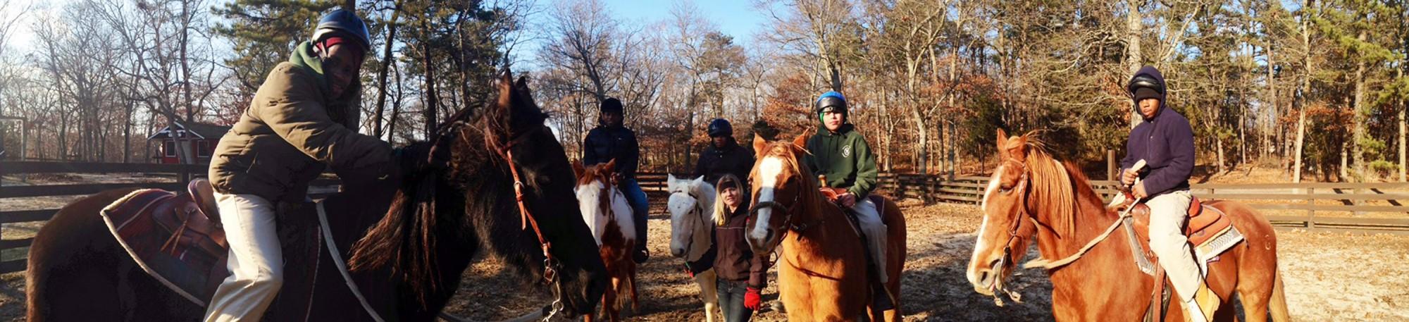 boys horses